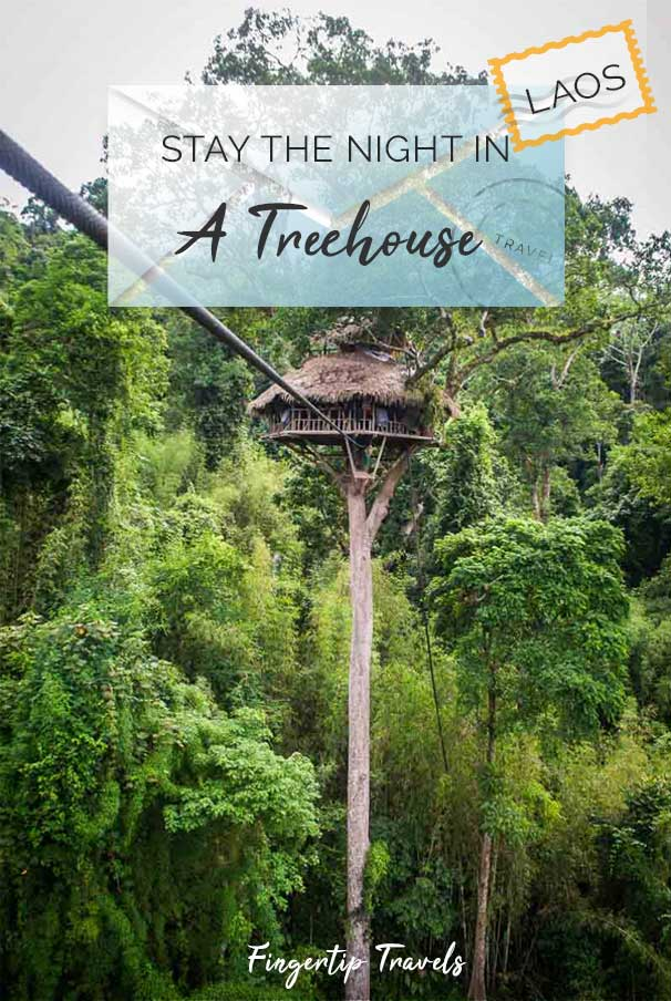 Guide to The Gibbon Experience, Laos. Stay in a treehouse overnight! Zip Line through the jungle into the tallest treehouse on earth.