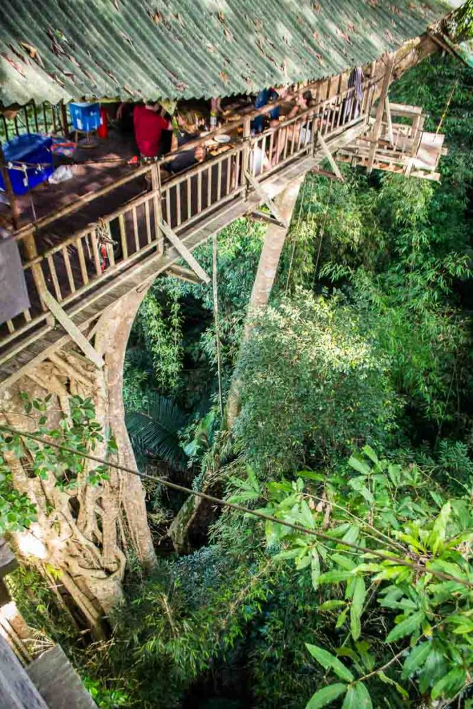 The Gibbon Experience Laos: an ecotourism treehouse experience! Stay the night in the world's highest treehouses.