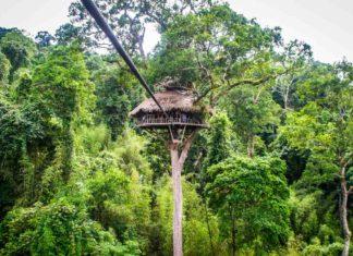 The Gibbon Experience Laos: an ecotourism treehouse experience!