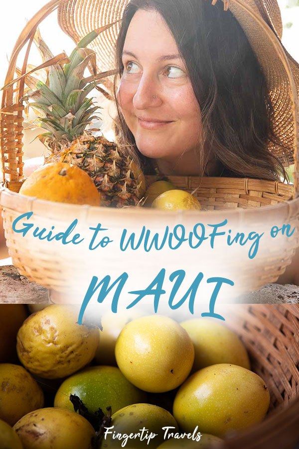 Guide to WWOOFing on Maui, Hawaii. WWOOF tips and tricks on how to select a farm, how to make the most of your time, how to stay healthy, and have an amazing time!