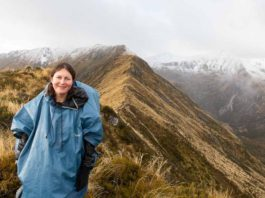 Cover photo for New Zealand Working Holiday Visa Blog